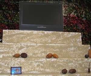 chocolat musee
